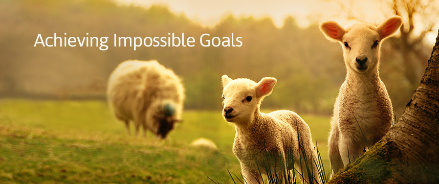 Achieving Impossible Goals